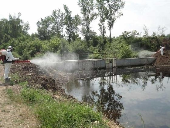 «Επί ποδός» τα συνεργεία της ΠΑΜ-Θ στην «μάχη» κατά των κουνουπιών εξαιτίας των βροχών