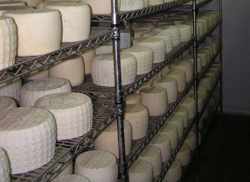 """Εγκαινιάζεται ο χώρος επεξεργασίας Γάλακτος και Γαλακτοκομικών Προϊόντων, του """"Θρακών - Αμνός"""""""