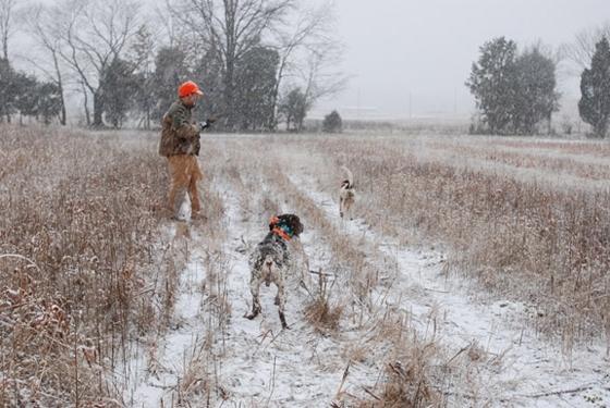 Δασαρχείο Διδυμοτείχου: Απαγόρευση κυνηγιού όταν επικρατούν ιδιαίτερα δυσμενείς καιρικές συνθήκες