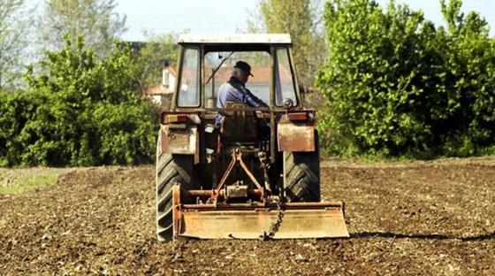 """Η αξιοποίηση του αγροτικού υποπροϊόντος """"μεταφράζεται"""" σε δωρεάν ρεύμα"""