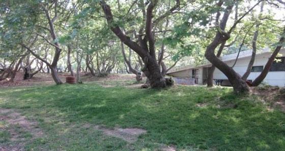 «Υιοθεσία» πάρκου στο Μαΐστρο Αλεξανδρούπολης: τι είναι & τι περιλαμβάνει
