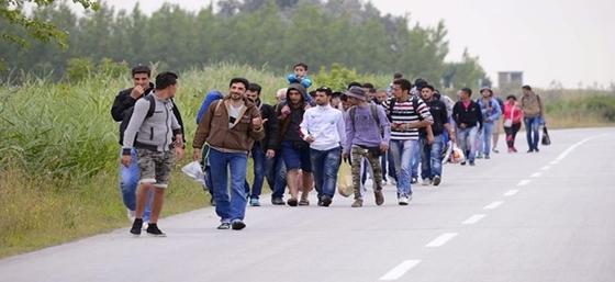 Μετανάστες επιτέθηκαν σε οδηγό στον Έβρο – «Ενέδρα» στην μέση του δρόμου