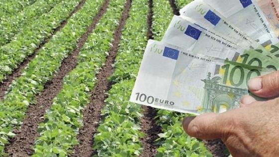"""""""Ανάσα"""" για τους αγρότες του Έβρου από τον ΕΛΓΑ"""