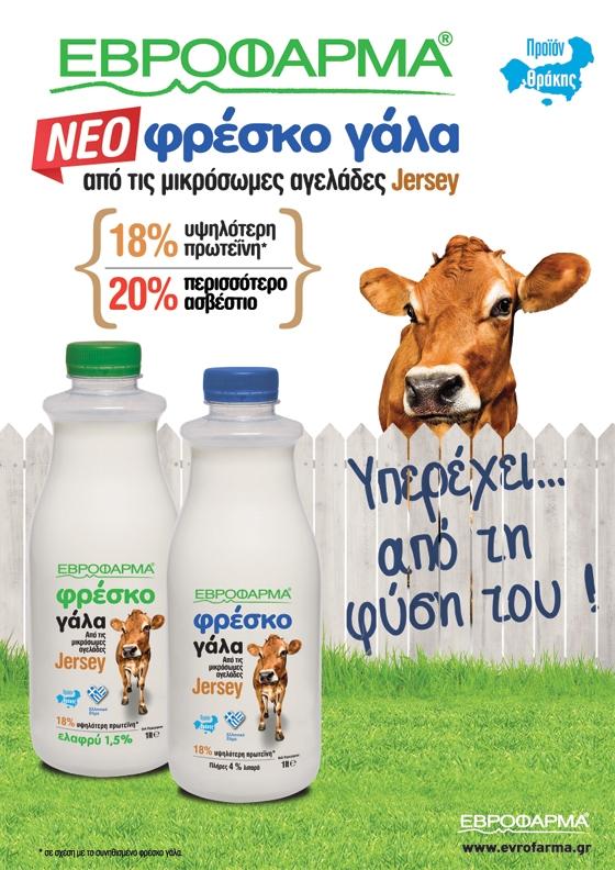 Η Εβροφάρμα πρωτοπορεί: Νέο φρέσκο γάλα από μικρόσωμες αγελάδες Jersey!