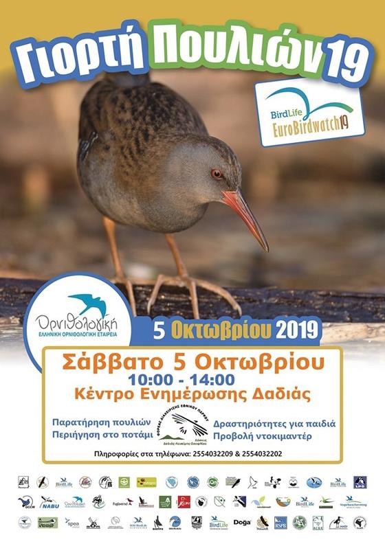 Ευρωπαϊκή Γιορτή πουλιών 2019 στο Εθνικό Πάρκο Δάσους Δαδιάς-Λευκίμης-Σουφλίου