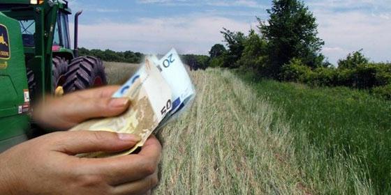 Έπεσαν οι υπογραφές για τις ενισχύσεις βάμβακος και σιτηρών Έβρου