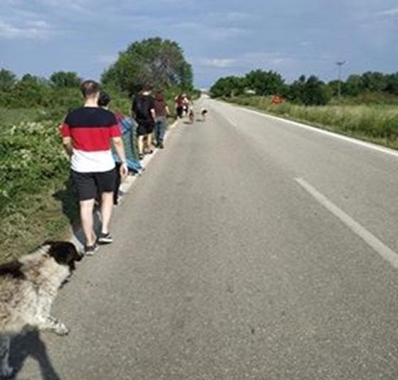 Οικότροφοι διασχίζουν με «ασφάλεια» το δρόμο προς την πόλη (απόσταση 5 km)