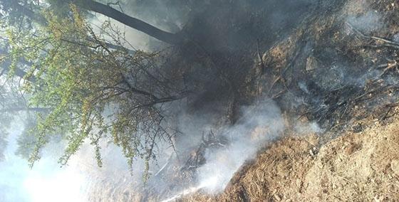 Ανησυχία στον Έβρο: 11 φωτιές σε δέκα ημέρες σε σημεία-περάσματα μεταναστών