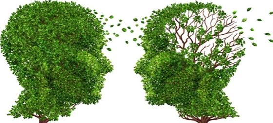Θα χορηγηθούν δωρεάν τεστ μνήμης σε άτομα άνω των 60 ετών, ενώ θα γίνει ενημερωτική ομιλία σε σχέση με τη νόσο Alzheimer.