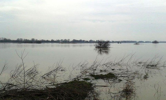 Επιτυχής η επιχείρηση απεγκλωβισμού, των μεταναστών από νησίδα του ποταμού Έβρου
