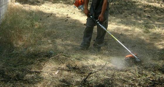 Δ. Αλεξ/πολης: Υποχρεωτικός καθαρισμός οικοπέδων και ακάλυπτων χώρων.