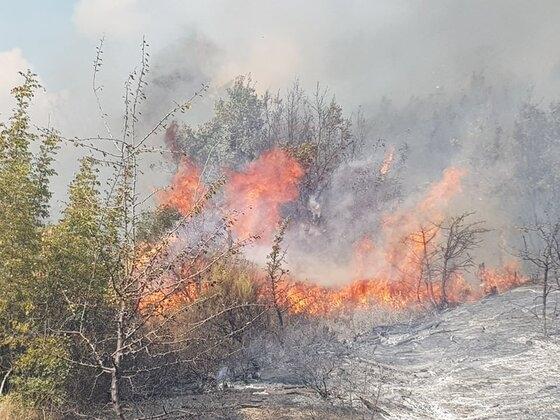 Πυρκαγιά σε δασική έκταση στη Λευκίμη Σουφλίου (video - φώτο)