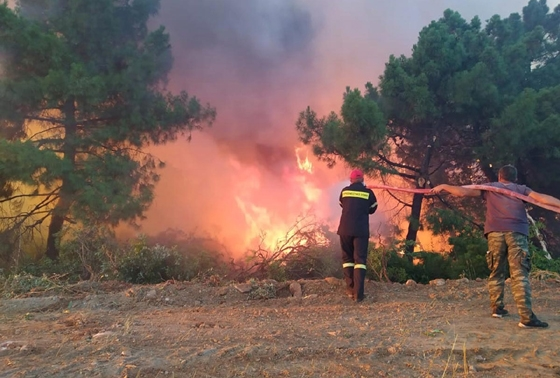 Αίσιο τέλος της πυρκαγιάς για τον οικισμό Ποντίων Σαπών - Σώθηκαν όλοι οι κάτοικοι